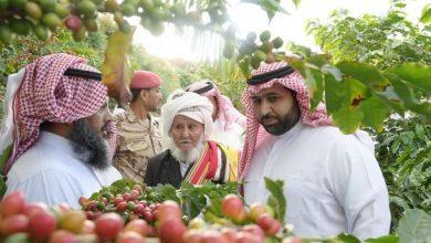 جائزة الأمير محمد بن عبدالعزيز لمزرعة البن النموذجية تفتح باب التسجيل