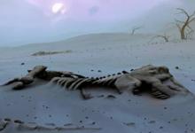"""""""علماء الحفريات"""" حفرية الديناصور التي عثر عليها 2012 تعود لأكبر حيوان بري على الأرض"""