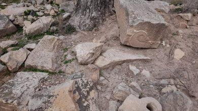 وسائل الإعلام التونسية تعلن عن اكتشافات أثرية بولاية منوبة