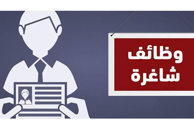 1292 وظيفة شاغرة بالقطاع الحكومي والخاص لحملة جميع المؤهلات والتخصصات