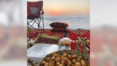 من أعلى جبال وادي الحلو بالشارقة.. توثيق لسحر الإمارات