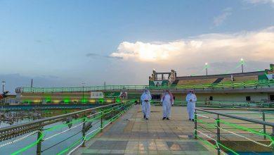 منطقة الباحة تنهي استعدادتها للاحتفاء باليوم الوطني للمملكة.. مكتسية باللون الأخضر