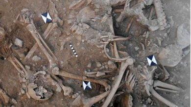 علماء ىثار يكتشفون مقبرتين جماعيتين تضمان رفات جنود من الحملات الصليبية بلبنان_الديرة نيوز